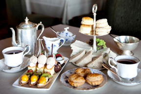 foto_hightea